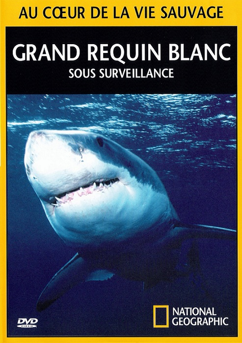 National Geographic - Grand requin blanc sous surveillance [TVRIP]
