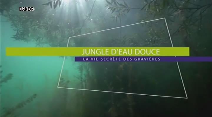 Jungle d'eau douce - La vie secrète des gravières [TVRIP]