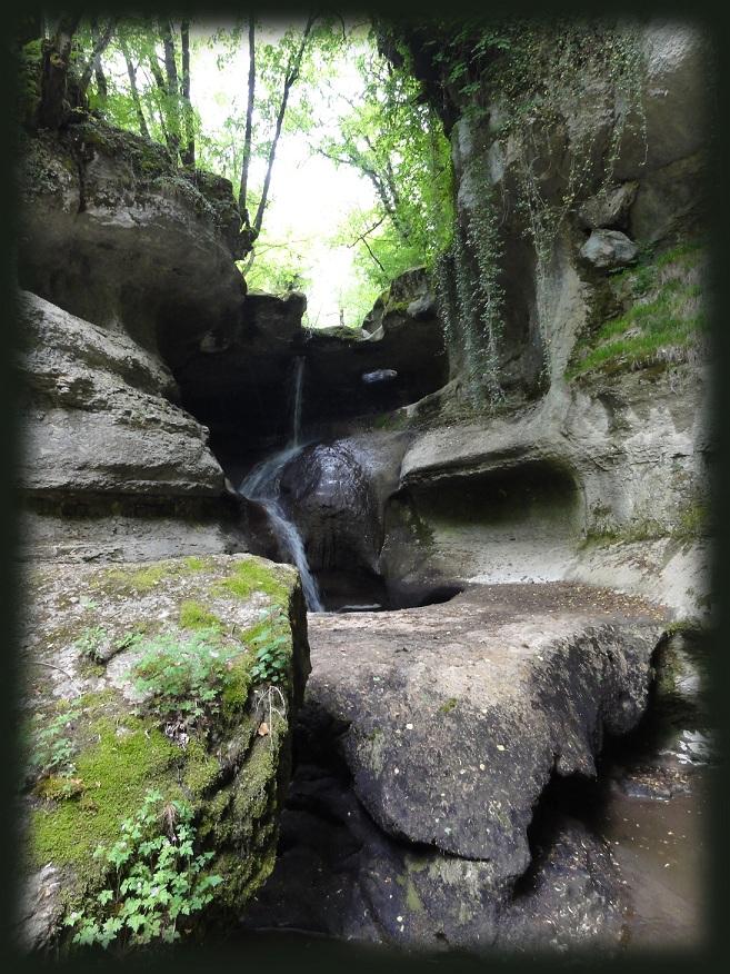 Vos plus belles rencontres avec la nature - Page 5 1211060831043419210520888