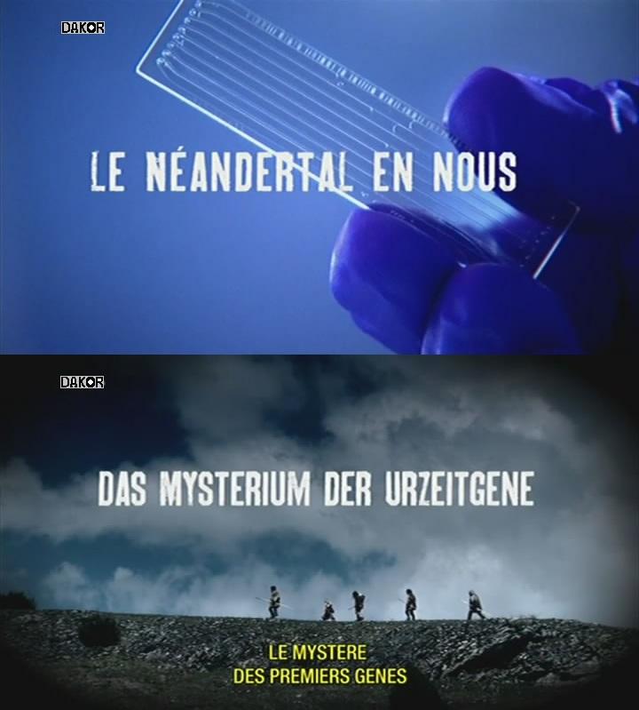 Le Néandertal en nous - Le mystère des premiers gènes  [TVRIP]