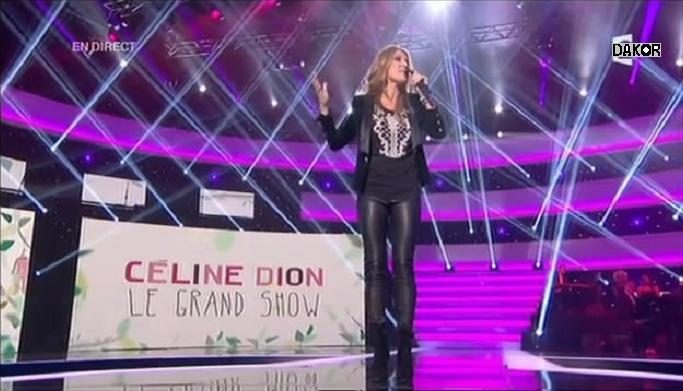 Céline Dion, le grand show - 24/11/2012 [TVRIP]