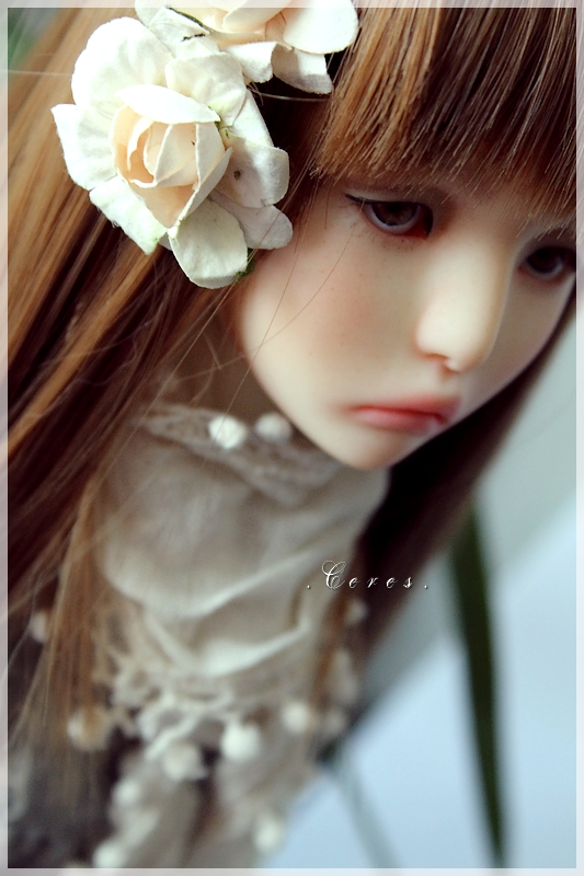 Lexie (Ziya - Youpladoll) P40 1212030405244628410623262