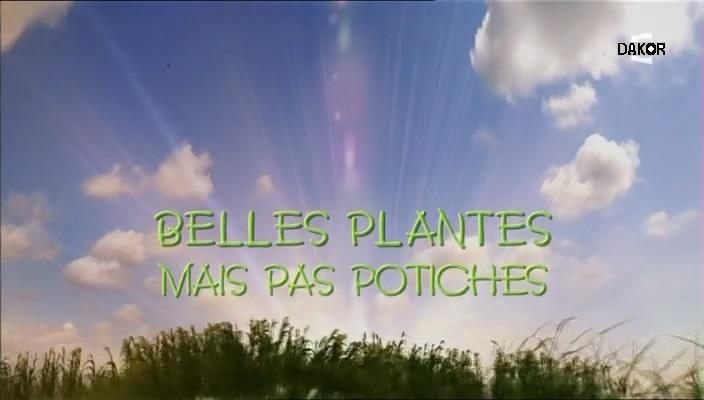 Belles plantes mais pas potiches [TVRIP]