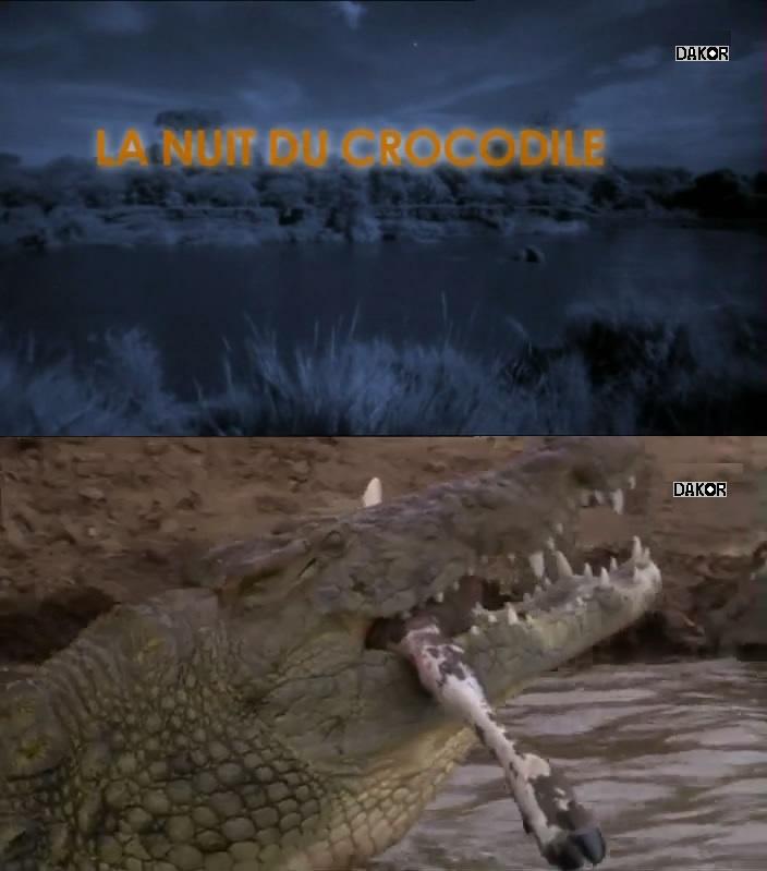 La nuit du crocodile [TVRIP]