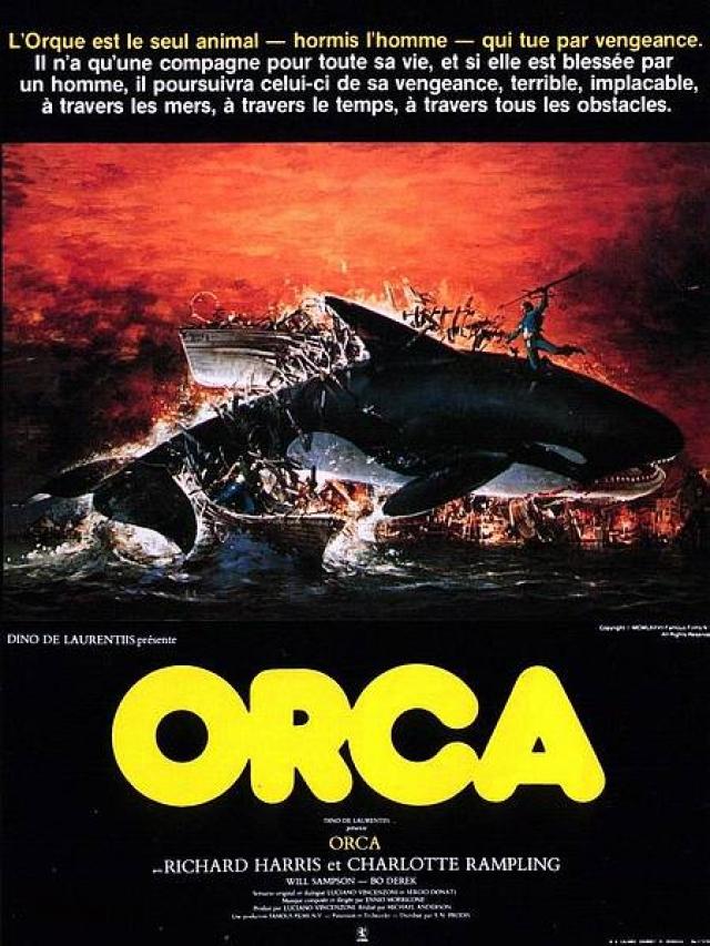 Orca, le film dans e) COUPS DE COEUR 12122308364915299610692334