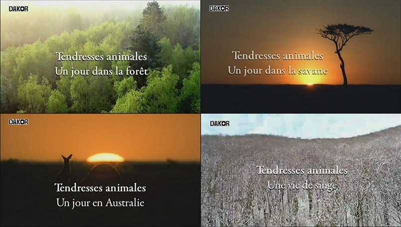 Tendresses animales - [4/4] [TVRIP]