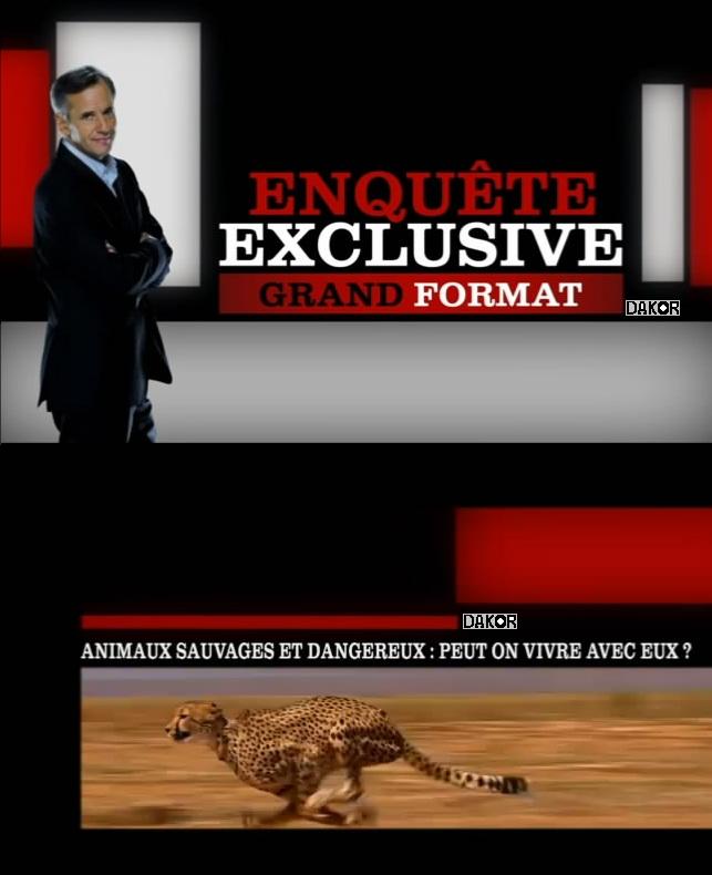 Enquête Exclusive grand format - Animaux sauvages et dangereux: peut on vivre avec eux ? - 30/12/2012 [TVRIP]