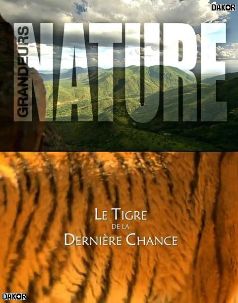 Grandeurs nature - Le Tigre de la dernière chance [TVRIP]