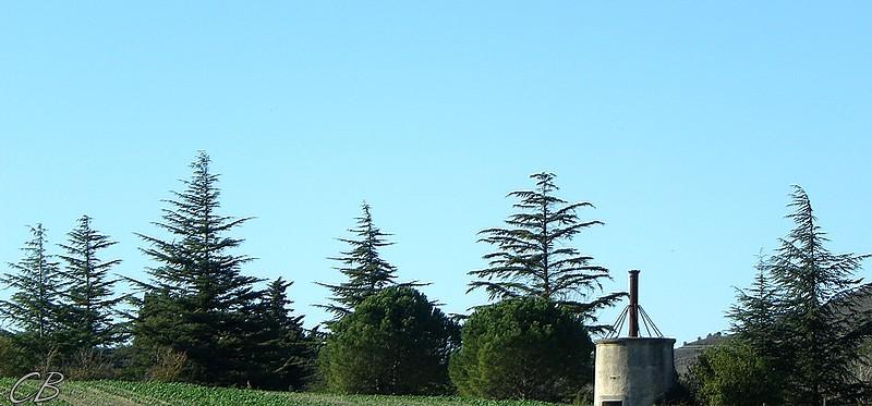 Villasavary la soucoupe 11 12 2012