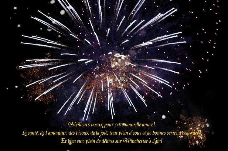 Un tit bonjour de Suisse - Page 4 1301130232023523710756384