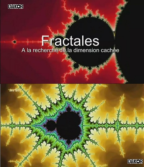 Fractales, à la recherche de la dimension cachée [tvrip]