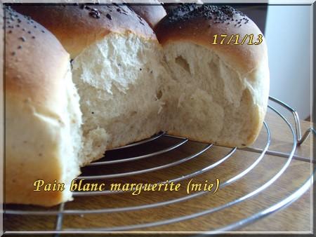 Pain marguerite + photos 1301180917396838310773894