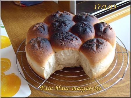 Pain marguerite + photos 1301180917456838310773896