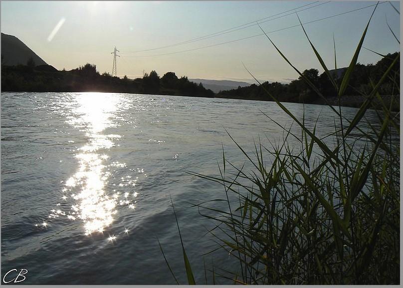 Bord d'Arve zu fil de l'eau septembre 2008