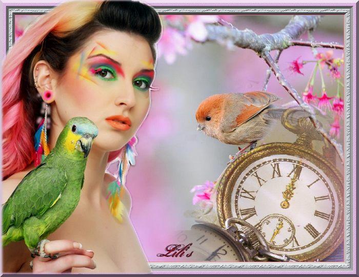 oiseau montre 1