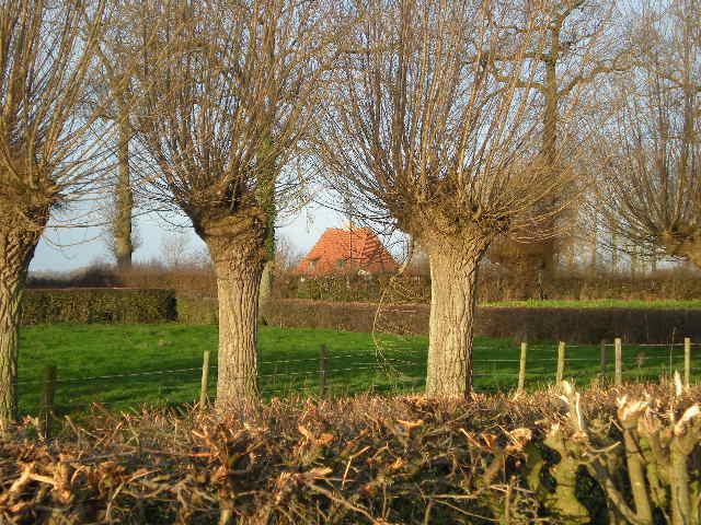 'Friese daken' in Frans-Vlaanderen 13020511334514196110834693