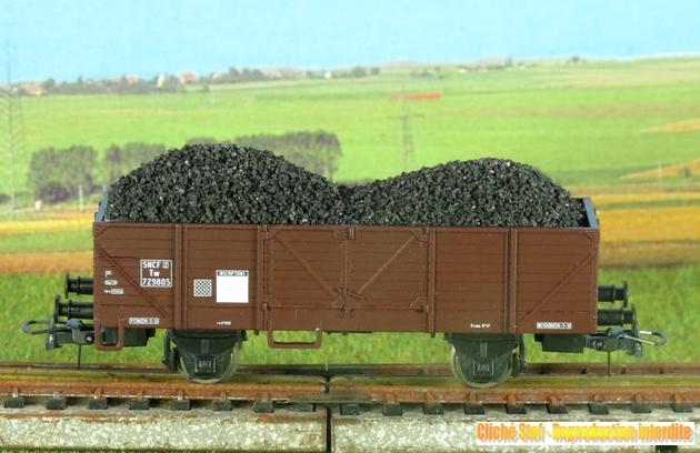 les wagons marchandises 1303041144388789710931421