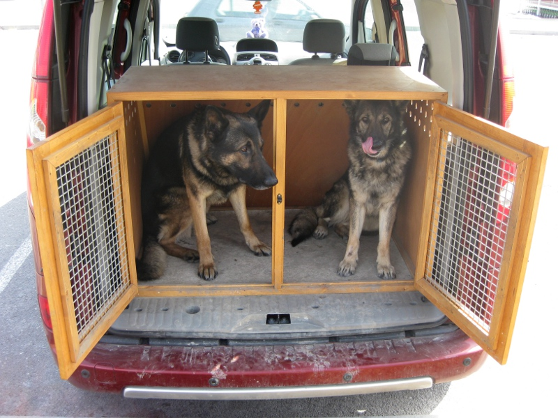 caisse pour chien en bois courroie de transport. Black Bedroom Furniture Sets. Home Design Ideas