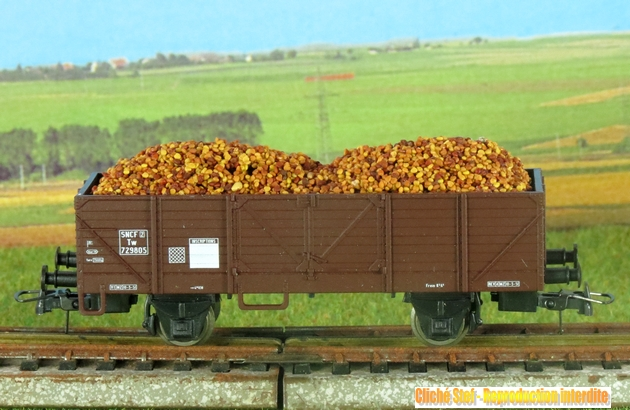 les wagons marchandises 1303060844478789710939362