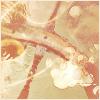 """Capharnaüm Ambiant [Ehawee""""s Book V2] 13031905295716205210988922"""