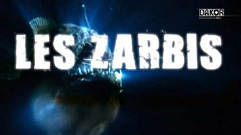Download Movie Les zarbis [HDTV-720p]