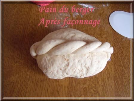 Pain du berger + photos 1303240621216838311007553