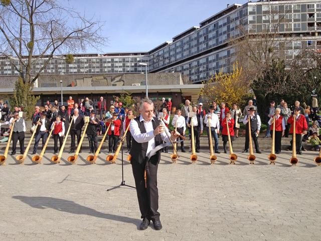 2013 : Concert de Cors des Alpes 1304130734401858211081796