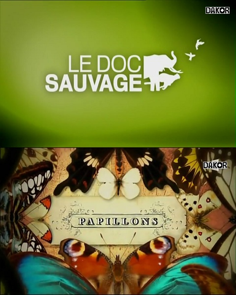 film Le Doc Sauvage - Papillons en streaming