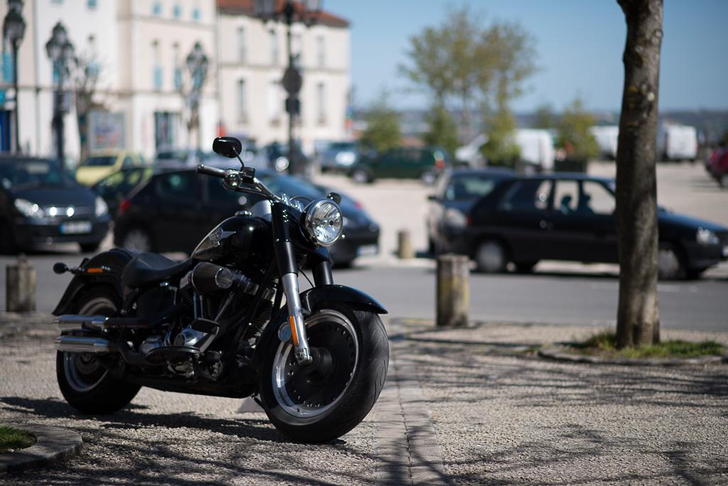 Sortie Charente - Les photos ... - Page 16 13042903241214766111134395