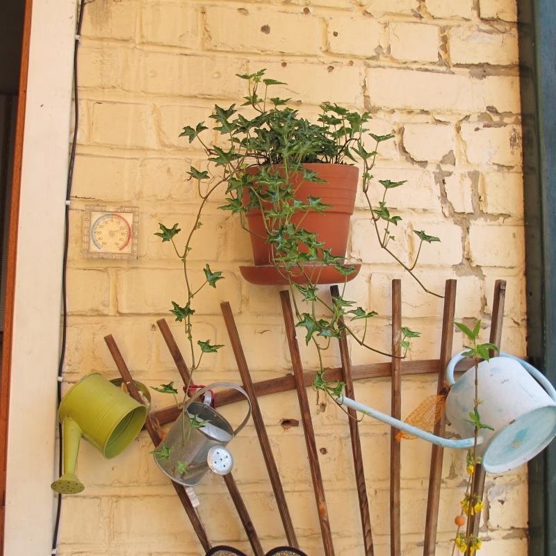 Le jardin de Ninie !!! 1305060302048300611158837