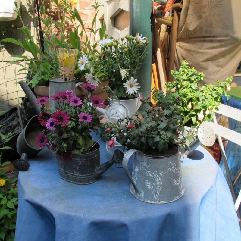 Le jardin de Ninie !!! 1305060302148300611158839