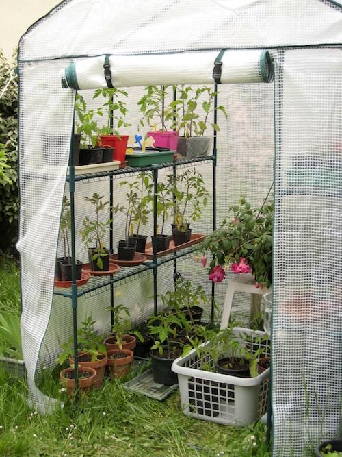 Saison 2013 le jardin voyageur de nina89 au jardin for Le jardin voyageur