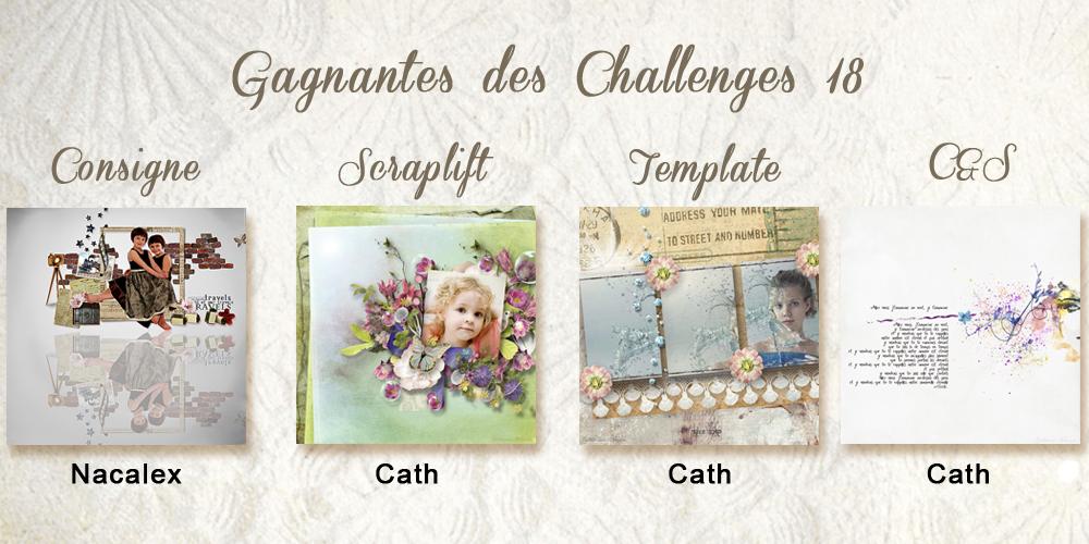 Résultats des challenges N°18 13061505231814136211295037