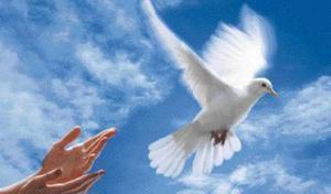 Bonjour, bonsoir, vos humeurs du jour  ;) - Page 3 1307050930498300611355436