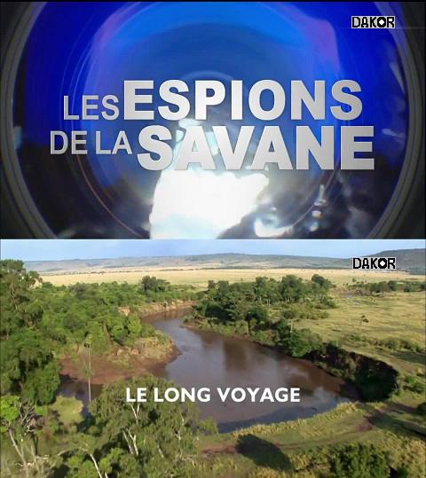 Les Espions de la savane: Le long voyage