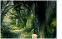 Forêt de Kilika