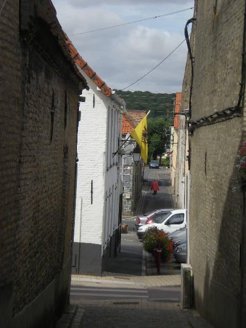 De Vlaamse vlag op onze huizen hangen 13082009332714196111479489