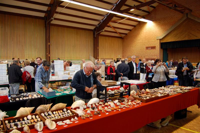 2013 Bourse internationale Ottmarsheim - 14 & 15 Septembre - AFC Région EST  13091503524314587711553324