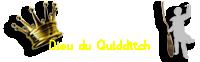 Dieu du Quidditch