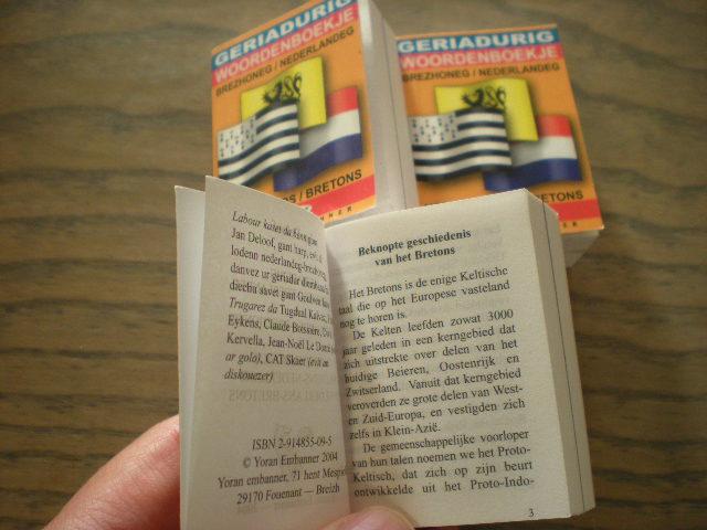 Nederlandse leerboeken, grammatica's en woordenboeken voor franstaligen 13100409185514196111611504