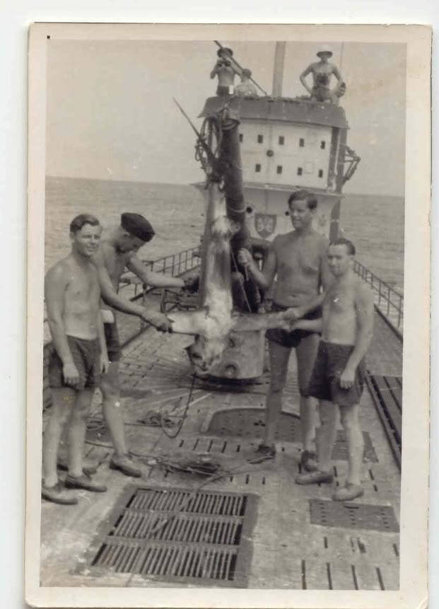 Eclairage Mer Noire, ou la 34 renait de ses cendres... 13101203372411831911632913