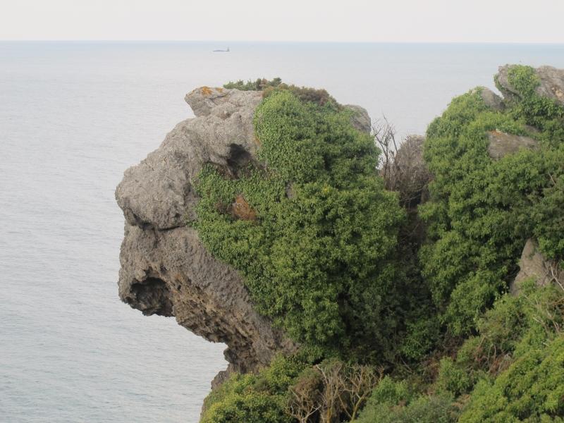 Pointe du Meinga 1311040319358300611702819