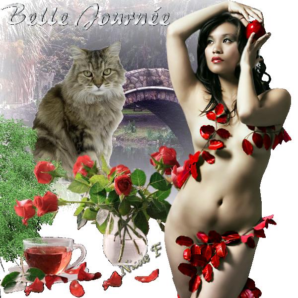 Bonjour du jour et bonsoir du soir - Page 4 1311110612075473611723708