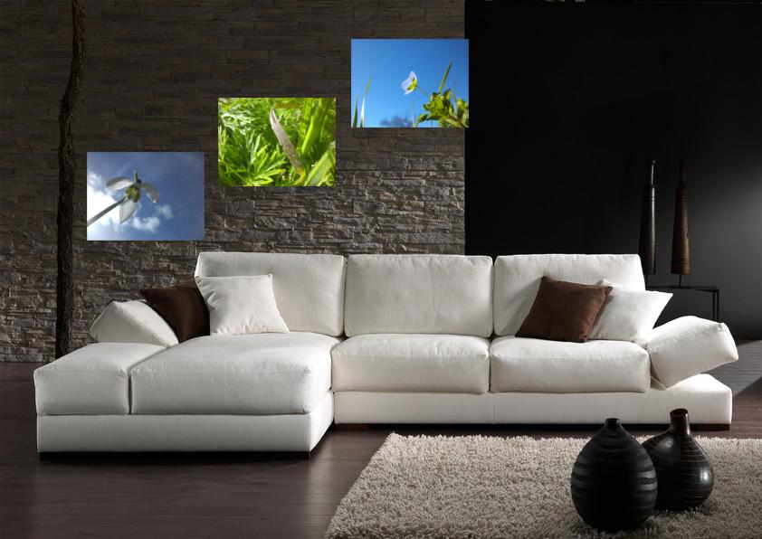 Salon avec poster de la nature