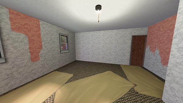 52-pièce à aménager 2