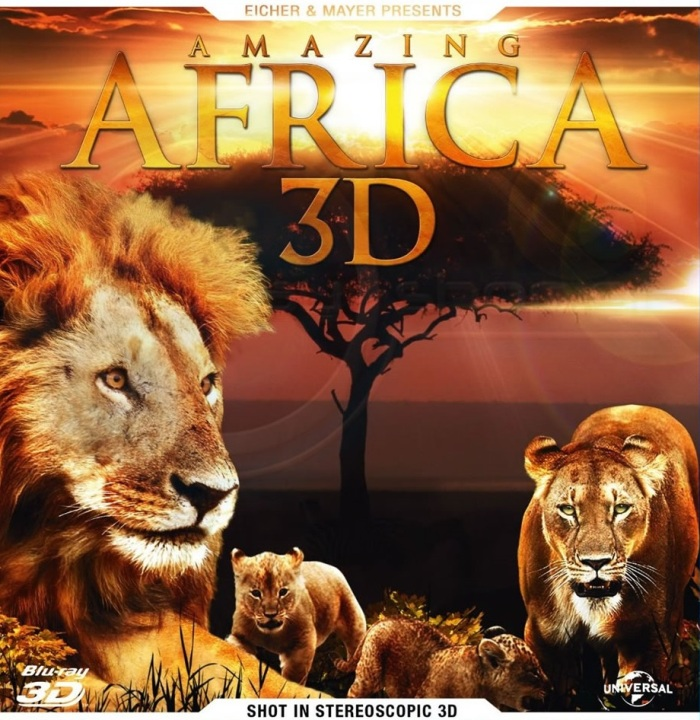Amazing Africa |FRENCH| [BRRip]