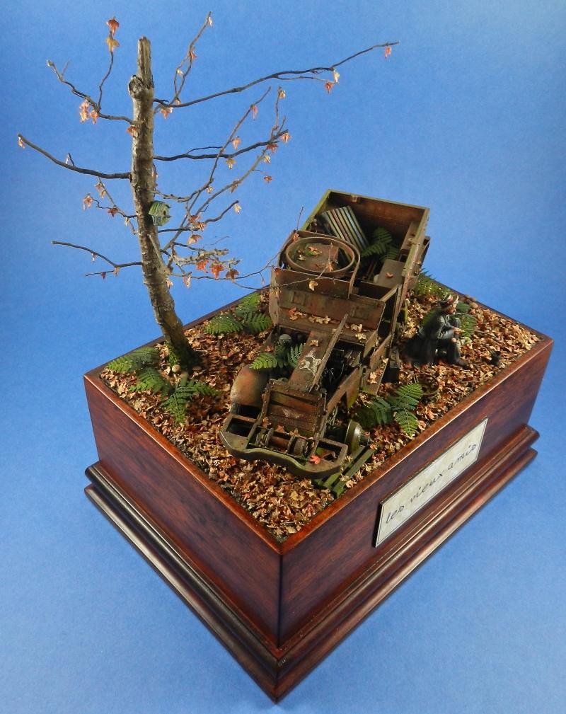 diorama épave de HALFTRACK ( terminé le 10/01/2014) - Page 2 14011008213115063811886494
