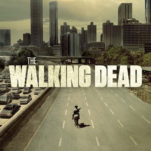 THE WALKING DEAD : SAISON 1 dans Fantastique 14011507200515263611900385