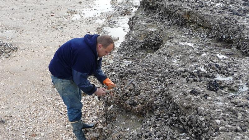 Aux huîtres ! A Chatelaillon 1403010209427657712025132