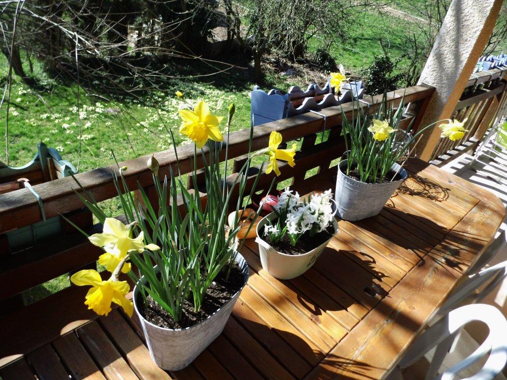 printemps 2014 savoie